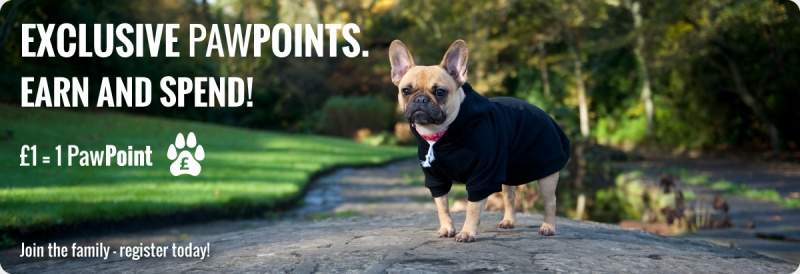 dog-clothing-pawpoint