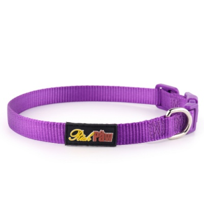 Essential Purple Dog Collar