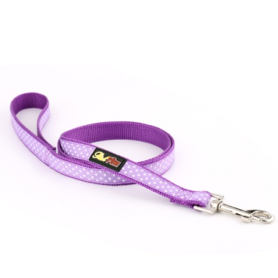 Purple Spotti Dog Lead