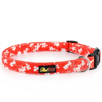 Red Canvas Dog Collar