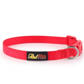 Essential Red Dog Collar